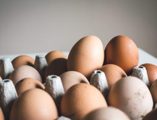 Verantwortungsvoller Einkaufen: Eier